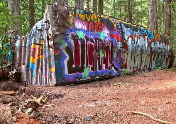 Photograph - Box Car Art In British Columbia by Adam Jewell