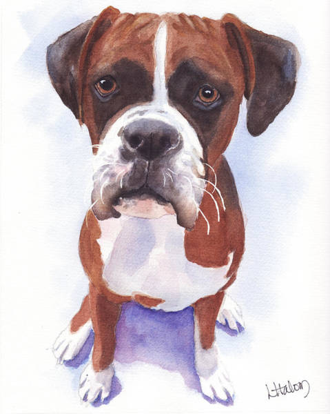 Painting - Boxer by Greg and Linda Halom