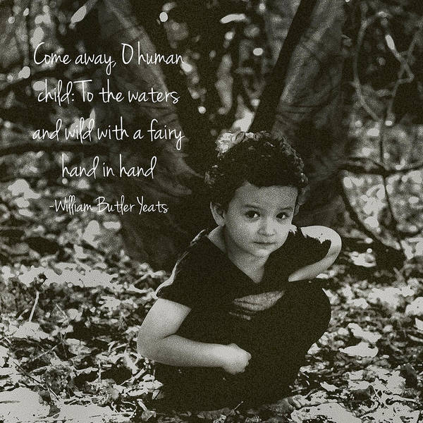 Haines Falls Photograph - Boy Fairy And Quote by Cherie Haines