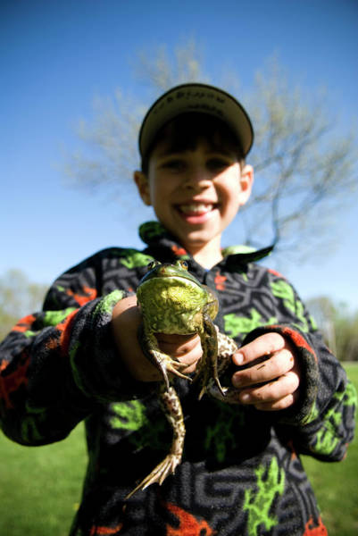 Bull Frog Photograph - Boy Holding Bull Frog, Maine, New by Peter Dennen