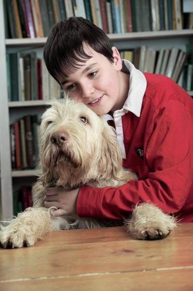 Pet Care Photograph - Boy Hugging His Dog by Mauro Fermariello/science Photo Library