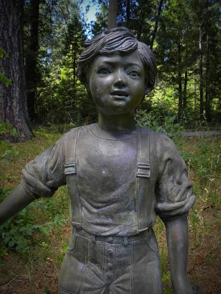 Photograph - Boy In The Forest by Frank Wilson