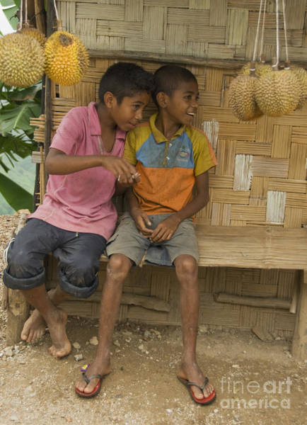 Photograph - Boys Selling Durians In Timor-leste by Dan Suzio