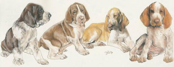 Wall Art - Mixed Media - Bracco Italiano Puppies by Barbara Keith