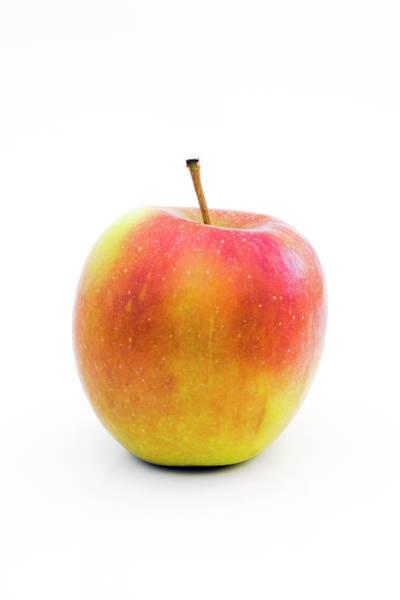 Malus Photograph - Braeburn Apple by Geoff Kidd/science Photo Library