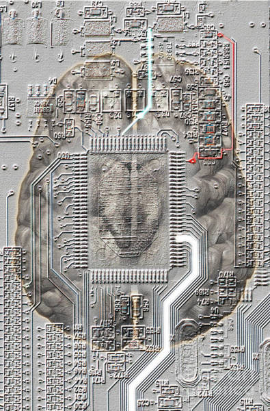 Photograph - Brain Circuit by Mike Agliolo