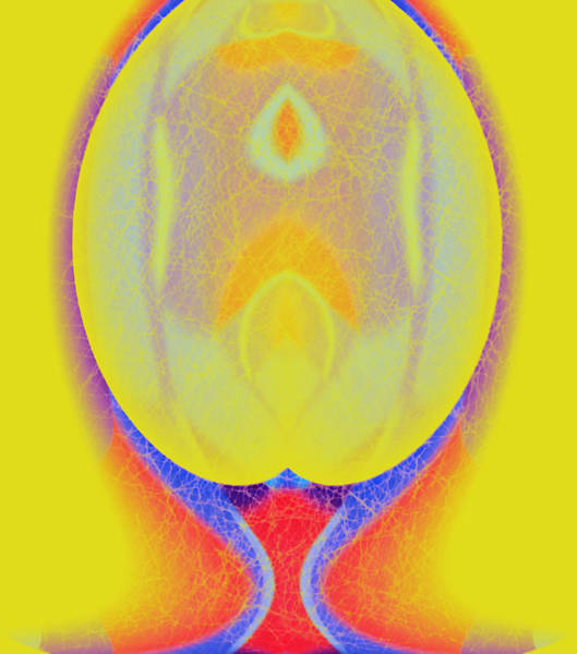 Wall Art - Digital Art - Brain Experiment by Mihaela Stancu