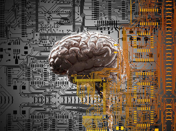 Brain Under Layers Of Circuit Board,  Art Print by John M Lund Photography Inc