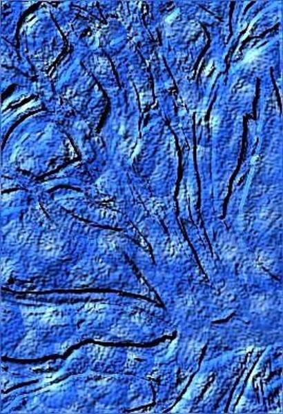 Wall Art - Digital Art - Branches Blue by Joann Renner