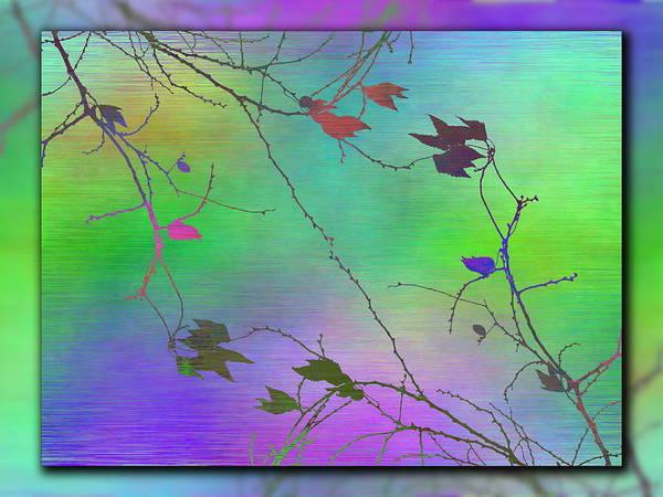 Wall Art - Digital Art - Branches In The Mist 100 by Tim Allen