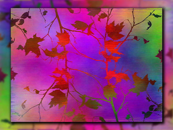 Purple Haze Digital Art - Branches In The Mist 13 by Tim Allen