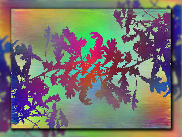 Purple Haze Digital Art - Branches In The Mist 25 by Tim Allen
