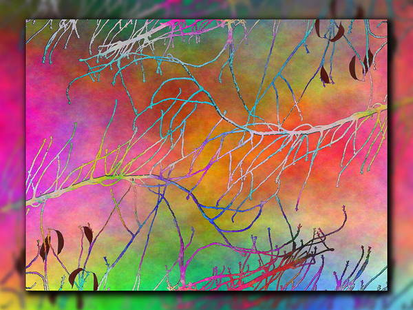 Arbor Digital Art - Branches In The Mist 4 by Tim Allen