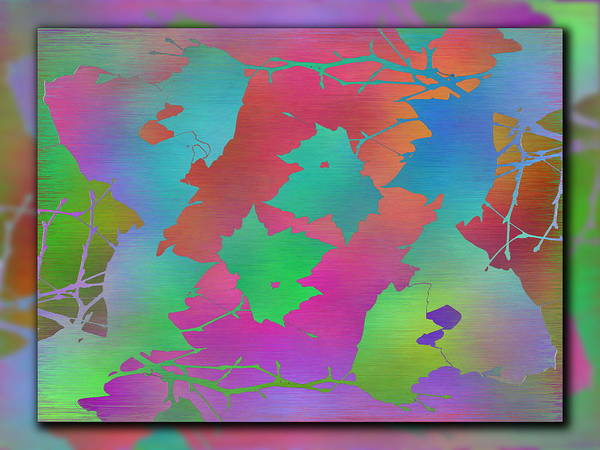 Wall Art - Digital Art - Branches In The Mist 49 by Tim Allen