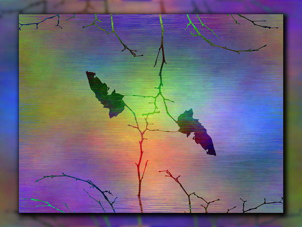 Wall Art - Digital Art - Branches In The Mist 52 by Tim Allen