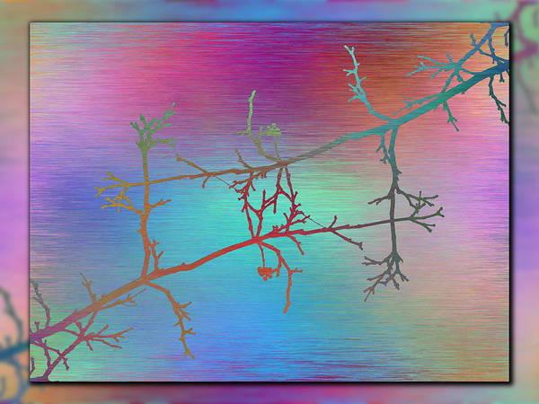 Wall Art - Digital Art - Branches In The Mist 60 by Tim Allen