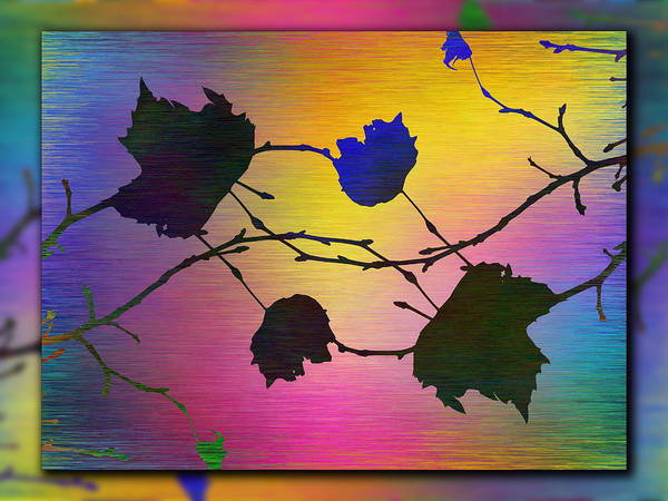 Wall Art - Digital Art - Branches In The Mist 71 by Tim Allen