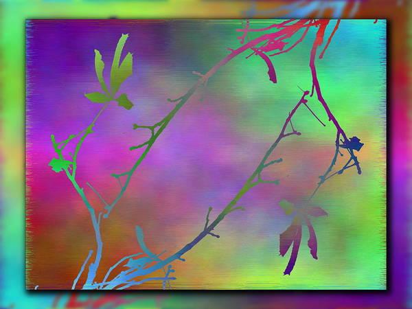 Wall Art - Digital Art - Branches In The Mist 77 by Tim Allen