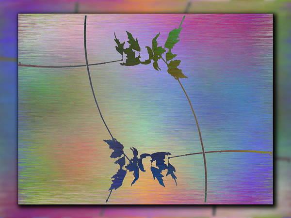 Wall Art - Digital Art - Branches In The Mist 82 by Tim Allen