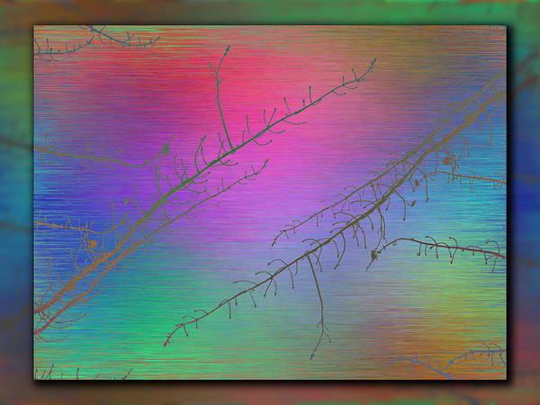 Wall Art - Digital Art - Branches In The Mist 89 by Tim Allen