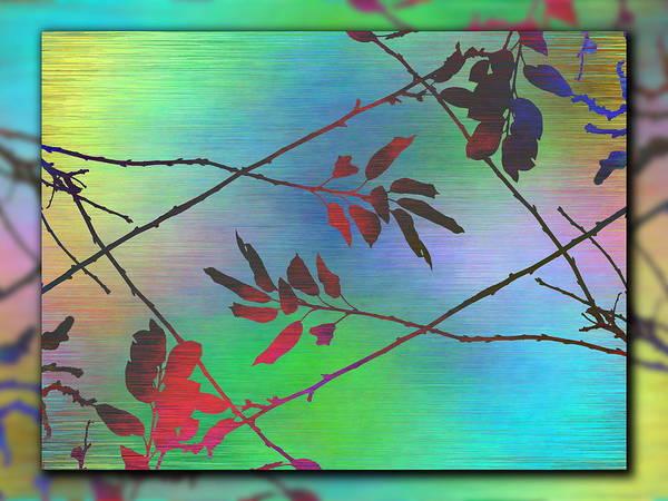 Lavender Mist Wall Art - Digital Art - Branches In The Mist 93 by Tim Allen