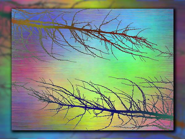 Wall Art - Digital Art - Branches In The Mist 97 by Tim Allen