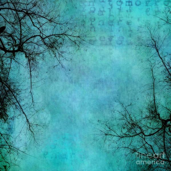 Robin Egg Blue Photograph - Branches by Priska Wettstein