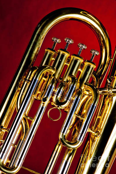 Photograph - Brass Music Instrument Tuba Valves In Color 3277.02 by M K Miller