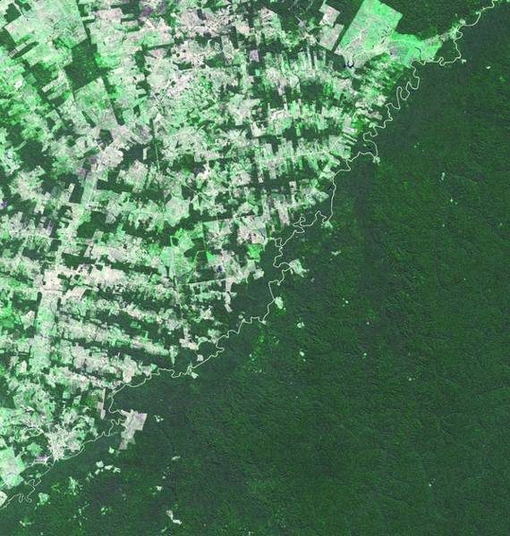 Developed Wall Art - Photograph - Brazil-bolivia Border by Nasa/gsfc/meti/ersdac/jaros, And U.s./japan Aster Science Team