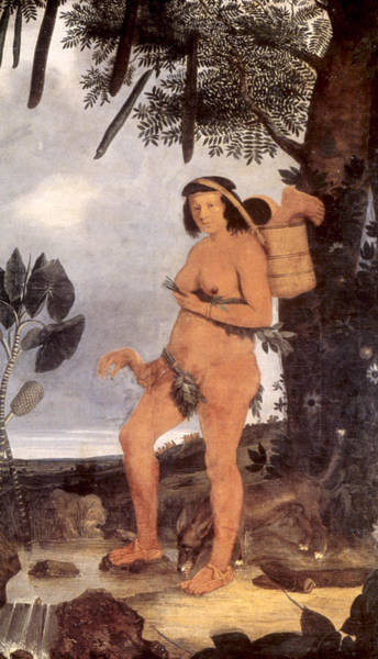 Latina Painting - Brazil Tapuia Native Indian by Granger