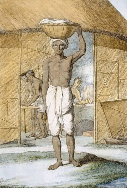 Worker Painting - Breadmaker, From The Hindus, Or by Franz Balthazar Solvyns