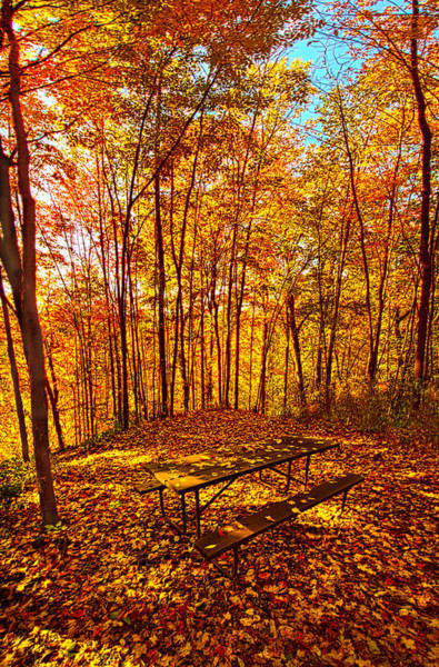 Picnic Tables Photograph - Break Time by Phil Koch