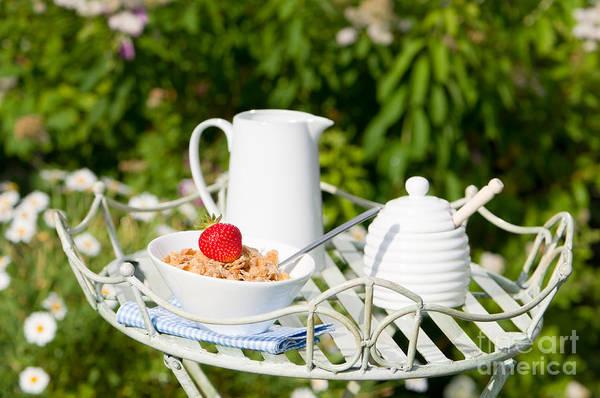 Flake Photograph - Breakfast Outdoor by Amanda Elwell