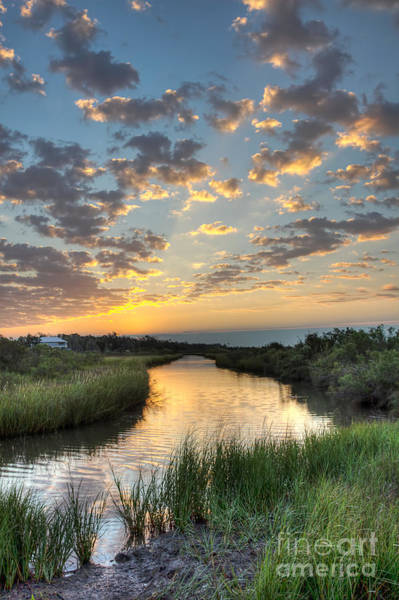 Swamp Photograph - Breaking Dawn Along The Bayou by Joan McCool