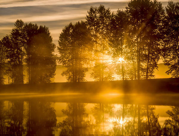 Alouette Wall Art - Photograph - Breaking Rays by James Wheeler