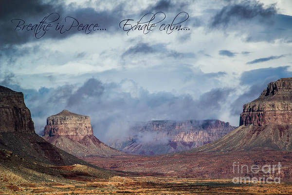 Photograph - Breathe In  by Jim McCain