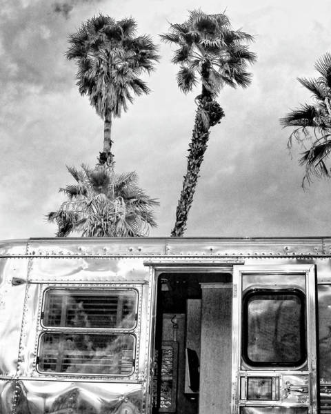 Wall Art - Photograph - Breezy Bw Palm Springs by William Dey