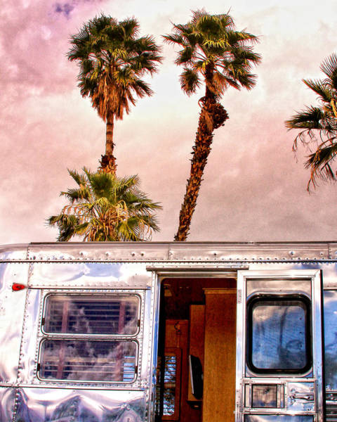 Wall Art - Photograph - Breezy Day Palm Springs by William Dey