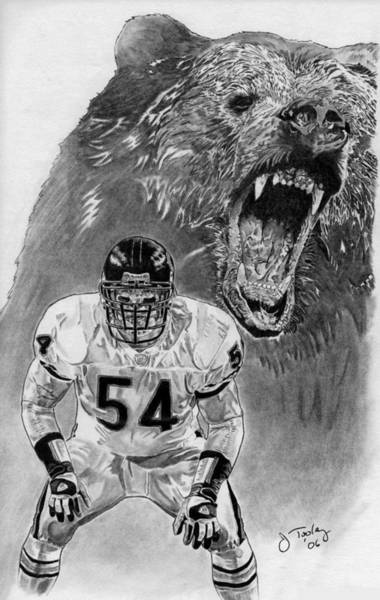 Vintage Chicago Drawing - Brian Urlacher by Jonathan Tooley