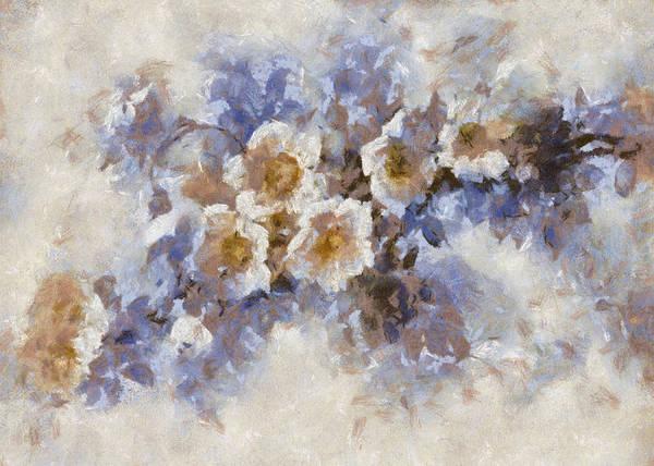 Digital Art - Briar Rose by Charmaine Zoe