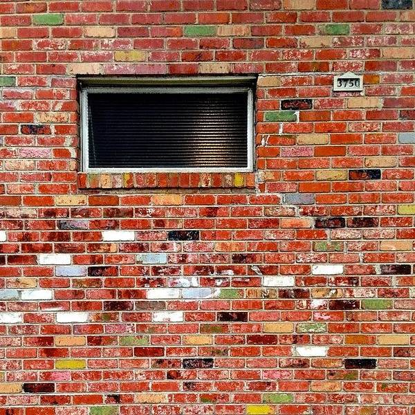 Wall Art - Photograph - Brick And Window by Julie Gebhardt