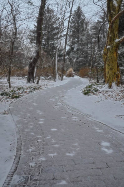 Photograph - Brick Path After Snow At Sayen Gardens by Beth Sawickie