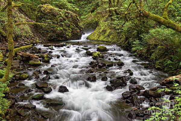 Photograph - Bridal Veil Creek by Stuart Gordon