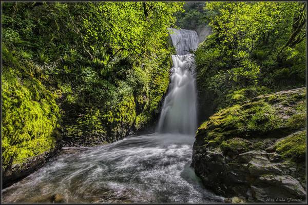 Photograph - Bridal Veil Falls by Erika Fawcett