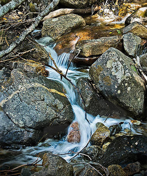 Photograph - Bridalveil Creek II by Gene Norris