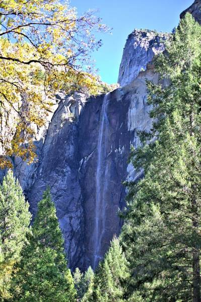 Photograph - Bridalveil In Yosemite by Gordon Elwell