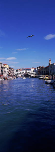 Wall Art - Photograph - Bridge Across A Canal, Rialto Bridge by Animal Images
