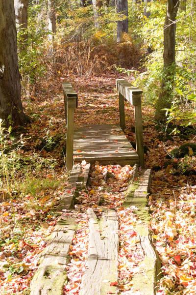 Photograph - Bridge And Fall Foliage At Twin Ponds  by Susan Jensen