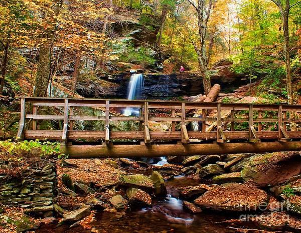 Photograph - Bridge By B Reynolds Falls by Nick Zelinsky