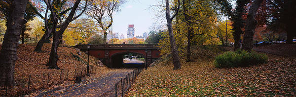 In Law Photograph - Bridge In A Park, Central Park by Panoramic Images